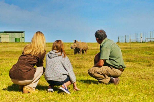 Kids-on-Safari-Shamwari-Game-Reserve-5
